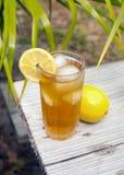 замороженный чай Стоковое фото RF