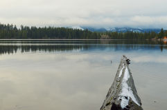 Замороженный logon озеро Стоковое Фото