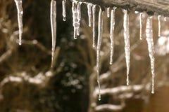 заморожено над waterside стоковое изображение rf