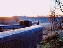 Заморозок дня Нового Года рано утром стоковое изображение rf