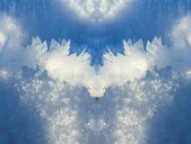 Заморозок зимы Стоковая Фотография RF
