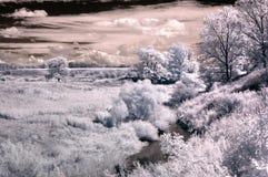 заморозок падения стоковое изображение
