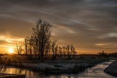 Заморозок утра стоковая фотография rf
