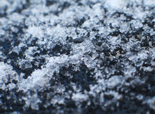 заморозок Стоковое фото RF