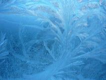 заморозок Стоковые Изображения RF