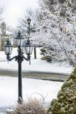 Заморозьте покрытые деревья и уличный свет после замерзающего дождя весны Стоковое Фото