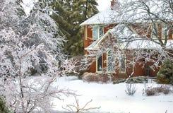 Заморозьте покрытые деревья после замерзающего дождя в Торонто, Канаде Стоковое Изображение RF
