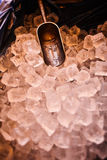 Заморозьте с ветроуловителем в ведре льда, подготовке льда в баре для партии события Стоковые Изображения RF