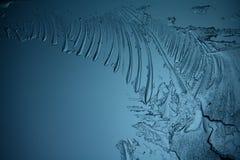 Заморозьте текстуру, макрос, голубой сломанный холод предпосылка Стоковая Фотография