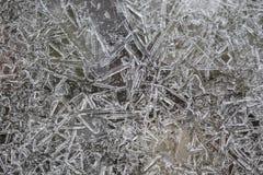 Заморозьте форму, формы, структуру, кристаллы на стержне и реку во время зимы в январе, Шотландию стоковое изображение rf