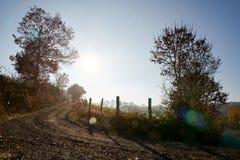 Замотка грунтовой дороги, полдень contre-jour с голубым небом стоковые фотографии rf