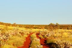 Замотка грязной улицы до австралиец Буш Стоковые Изображения RF