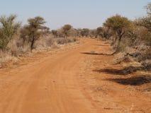 замотка дороги bush Стоковое Изображение RF