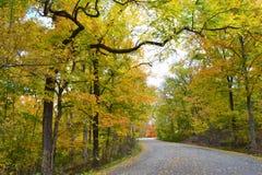 Замотка дороги через лес во время сезона падения стоковая фотография rf