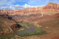 замотка реки colorado каньона грандиозная стоковые изображения