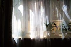 Занавес на окне в утре Стоковые Изображения