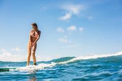 Заниматься серфингом весь день стоковое фото