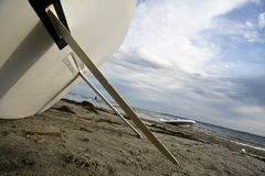 заниматься серфингом доски Стоковое Изображение RF