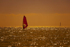 заниматься серфингом захода солнца стоковое изображение rf