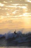 Заниматься серфингом на заходе солнца Стоковые Изображения