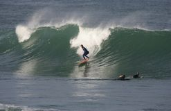 заниматься серфингом Стоковое Фото
