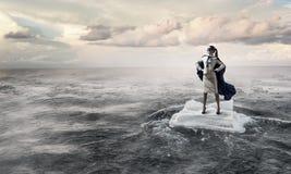 Занимаясь серфингом море на ледяном поле Мультимедиа Стоковое Изображение RF