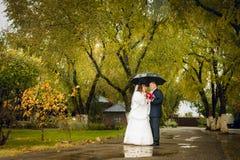 Заново пожененные пары представляя в парке, осень Стоковые Фотографии RF