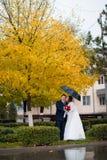 Заново пожененные пары представляя в парке, осень Стоковое Изображение