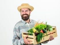 Занятие образа жизни фермера профессиональное Еда покупки местная Владением человека фермера коробка деревенским бородатым деревя стоковые фотографии rf