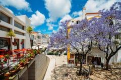 Занятые touristic рестораны и бары с традиционной португальской архитектурой и голубое дерево Jacaranda на переднем плане внутри стоковая фотография rf