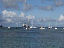 Занятый анкоредж в наветренных островах видеоматериал