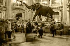 Занятый день на музее Стоковая Фотография RF