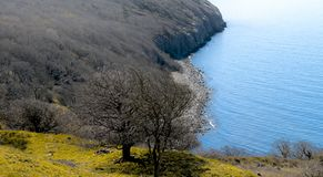 Западная сторона острова Борнхольма - Дании Стоковое Фото