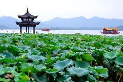 Западное озеро (hangzhou, фарфор) стоковые фотографии rf
