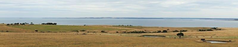 западное панорамы гаван стоковая фотография rf