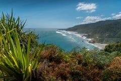 Западное побережье острова Новой Зеландии южного стоковые фото