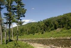 Западное река стоковая фотография rf