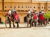 Западные туристы ехать слоны на янтарном форте в Джайпуре, Индии Стоковая Фотография