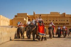 Западные туристы ехать слоны на янтарном форте в Джайпуре, Индии стоковое изображение