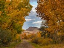 Западный склон в конце октября стоковая фотография rf