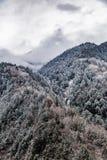 Западный Сычуань, Китай, пейзаж барона Холма со снегом стоковые фотографии rf