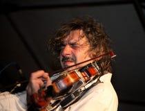 запальчиво violonist Стоковая Фотография RF