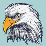 Запас вектора орла Стоковые Фото