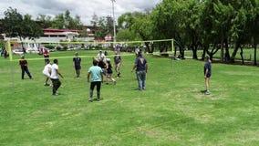 Запас волейбола акции видеоматериалы