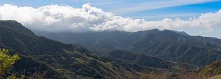 Запас леса облака Monteverde в Коста-Рика стоковые фотографии rf