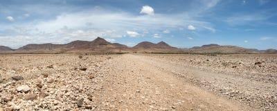Запас игры Kaokoland в Намибии Стоковые Фото