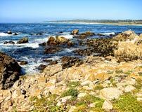 Запас Калифорния положения Asilomar морской стоковые изображения rf
