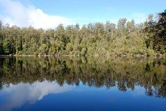 запас озера пущи chisholm Стоковые Фотографии RF