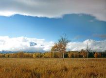запах в сентябре Стоковые Фотографии RF