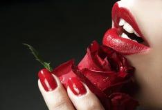 запах красотки Стоковое Изображение RF
